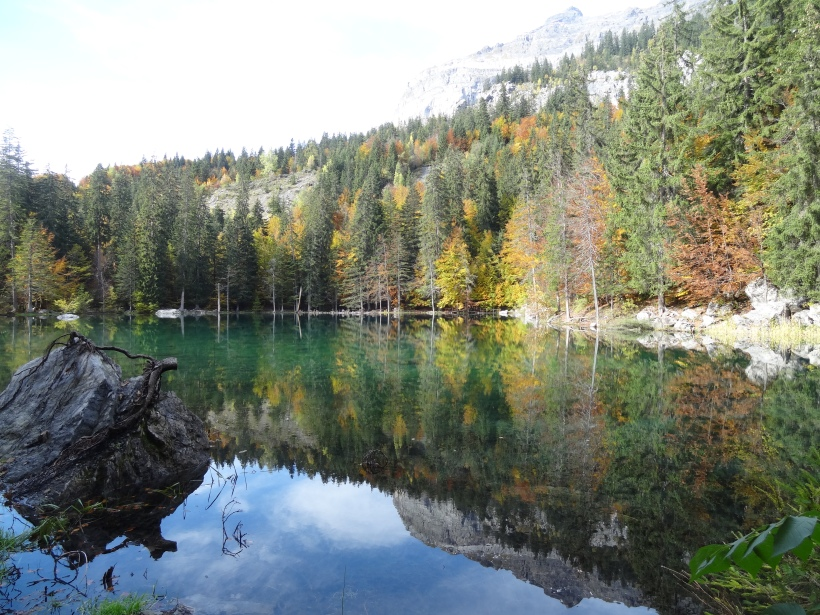 Autumn reflections at Lac Vert, Plaine Joux, Chamonix